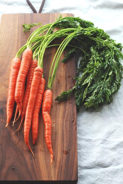 Roasted Carrot, Avocado & Toasted Quinoa Salad