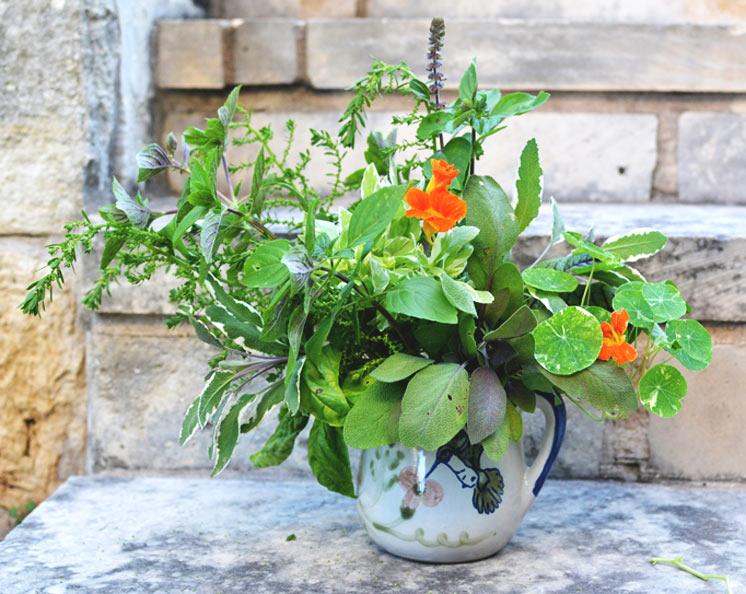 garden-flowers-10