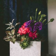 Succulent Planter by Rosehip Flora, photos by  Julie Cope   Perpetually Chic