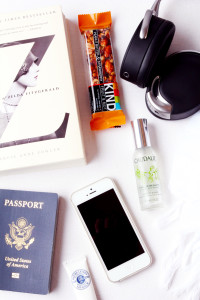 In-Flight Essentials | Perpetually Chic