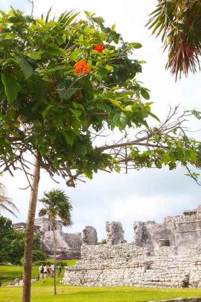 Tulum, Mexico   Perpetually Chic