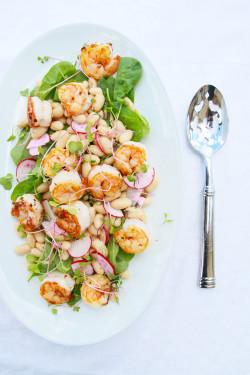Shrimp & White Bean Salad | Perpetually Chic