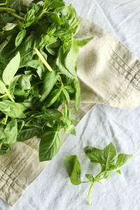 Homemade Pesto | Perpetually Chic